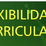 flexibilidadCurricularB-01