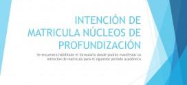 INTENCIÓN DE MATRICULA NÚCLEOS DE PROFUNDIZACIÓN